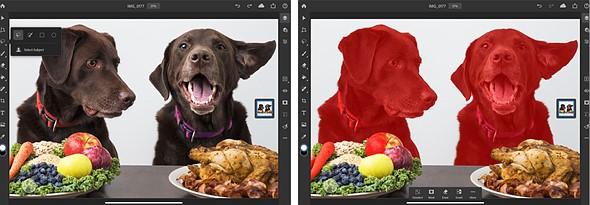 """İPad için Adobe Photoshop AI destekli """"Konu Seç"""" Özelliği!"""