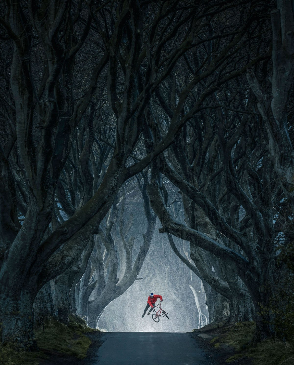 Mastepiece by EyeEm: Lorenz Holder, Germany, for his shot of Senad Grosic flying in the magical Game of Thrones location, The Dark Hedges, Northern Ireland.