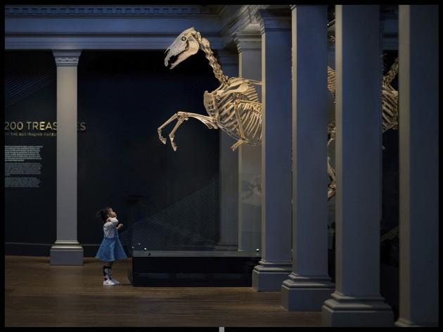 Derek Zhang, 'Night at the Museum