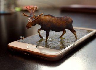 Akıllı Telefonlar Neden Daha İyi Fotoğraf Çekemez!